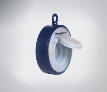 lined swing check Valve
